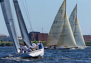 12 metre yachts 'Laura', 'Victory 83', and 'New Zealand' during the New York Yacht Club Annual Regatta, New York, USA, June 2013. All non-editorial uses must be cleared individually.  -  Onne  van der Wal