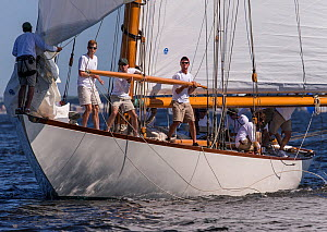 'Spartan' hoisting the Whisker pole during the New York Yacht Club Annual Regatta, New York, USA, June 2013. All non-editorial uses must be cleared individually.  -  Onne  van der Wal