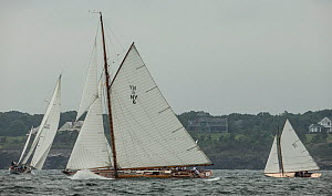 'Spartan', a 72 foot Herreschoff, built in 1913, competing in the Classic Yacht Regatta, Newport, Rhode Island, USA, August 2013. All non-editorial uses must be cleared individually.  -  Onne  van der Wal