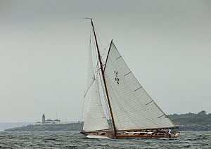 'Spartan', a 72 foot Herreschoff, built in 1913, rounding Beavertail Light, during the Classic Yacht Regatta, Newport, Rhode Island, USA, August 2013. All non-editorial uses must be cleared individual...  -  Onne  van der Wal