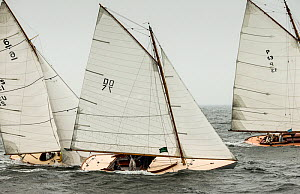 Three classic 6 Meters yachts, racing during the Classic Yacht Regatta in Newport, Rhode Island, USA, August 2013. All non-editorial uses must be cleared individually.  -  Onne  van der Wal