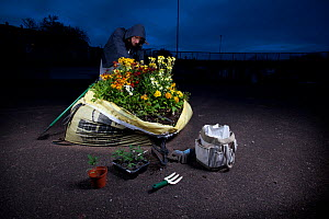 Guerrilla Gardener planting a flowerbed in a one ton sandbag at night. Model released. - Tom  Gilks