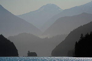 Mountains silhouetted in fog, Knight Inlet, East Coast, Vancouver Island, British Columbia, Canada, July.  -  Cheryl-Samantha  Owen