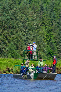 Tourists watch a Grizzly Bear (Ursus arctos horribilis) from a flat bottomed Brown bear watching boat. Knight Inlet, East Coast, Vancouver Island, British Columbia, Canada, July 2012.  -  Cheryl-Samantha  Owen