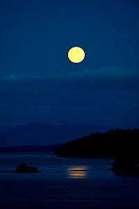 Moonrise over the ocean, taken from ferry from Vancouver to Victoria, Vancouver Island, British Columbia, Canada, July 2012. - Cheryl-Samantha  Owen