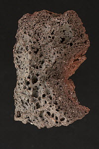 Scoria, a highly vesicular, dark colored volcanic rock that may or may not contain crystals. From Hawaii.  -  John Cancalosi