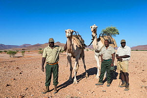 Save the Rhino Trust camel camp patrol team members Hans Ganaseb (left) and Dansiekie Ganaseb (right), with SRT director of field operations Simson Uri-Khob, (centre) and camels, Kunene region, Namibi... - Ann  & Steve Toon
