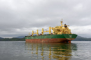 View of the container ship AS Valdivia in Prince Ruppert Harbour, used to ship grain and coal from Canada to China, British Columbia, Canada, June 2013.  -  Loic  Poidevin