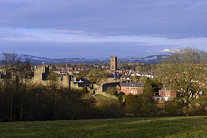 The Ludlow Castle and St. Laurence's Church, viewed from Whitcliffe Common, Shropshire, England, March 2013.  -  Will Watson
