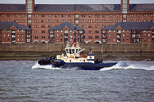 Switzer Maltby, a Mersey tug, on a choppy River Mersey,  Liverpool, Merseyside, United Kingdom, May 2013. All non-editorial uses must be cleared individually. - Graham  Brazendale