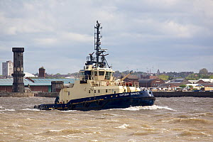 'Switzer Sussex' a Mersey tug, on a choppy River Mersey, Liverpool, Merseyside, United Kingdom, May 2013. All non-editorial uses must be cleared individually. - Graham  Brazendale