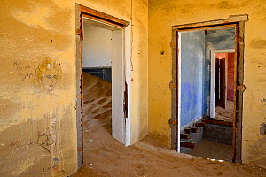Abandoned house full of sand, Kolmanskop Ghost Town, an old diamond-mining town where shifting sand dunes have encroached abandoned houses, Namib Desert Namibia, October 2013.  -  Enrique Lopez-Tapia