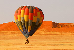 Hot air balloon landing after ride over the Namib desert, Namibia, February 2005.  -  Enrique Lopez-Tapia