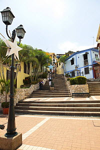 Steps and Las Penas galleries, with cafes and shops Guayaquil, Ecuador, August 2010. - Michele  Westmorland