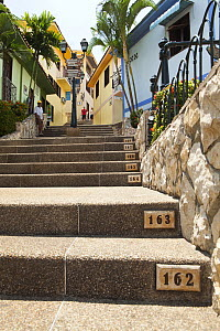 Numbered steps in Las Penas galleries, with cafes and shops.  Guayaquil, Ecuador - Michele Westmorland, Westmorland Images, LLC