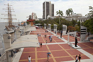 View of the malecon (promenade) and park along the Guayas River in Quayaquil, Ecuador, September 2011. - Michele  Westmorland