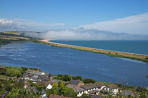 View from Torcross to Slapton Ley National Nature Reserve with sea mist, Devon, England, UK, July. - Adrian Davies