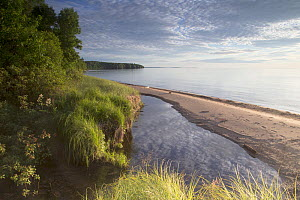 A beach at the edge of Lake Superior in the late afternoon. Apostle Islands National Lakeshore, Bayfield peninsula, Wisconsin, USA, July.  -  David  Pattyn
