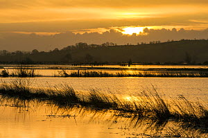 Sunrise reflected in vast expanse of flood water lying over the fields at King's Sedge Moor, near Othery, Somerset Levels, Somerset, UK. January 2014 - John Waters