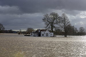 Floodwater covering a cricket ground, St. John's, Worcester, England, UK, February 2014. - Will Watson