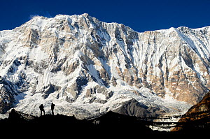 Mount Annapurna I (8091m) from base camp, with hikers and prayer flags silhouetted, Annapurna Sanctuary, central Nepal, November 2011.  -  Enrique Lopez-Tapia
