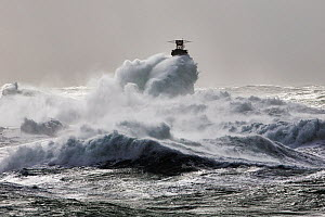 Rough seas at Nividic lighthouse during Storm 'Ruth', Ile d'Ouessant, Armorique Regional Park, Iles du Ponant, Finistere, Brittany, France, Iroise Sea. 8th February 2014.  France, Bretagne, Finistere,... - Benoit  Stichelbaut