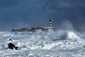 Rough seas at Creac'h lighthouse during Storm 'Ruth', Ile d'Ouessant, Armorique Regional Park, Iles du Ponant, Finistere, Brittany, France, Iroise Sea. 8th February 2014.  France, Bretagne, Finistere,... - Benoit  Stichelbaut