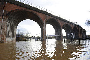 Railway viaduct in Worcester during the highest recorded floods, England, UK. 13th February 2014.  -  Will Watson