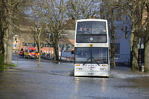 Shuttle bus with rescue vehicle and RIB boat during record breaking floods, New Road, Worcester, England, UK, 13th February 2014.  -  Will Watson