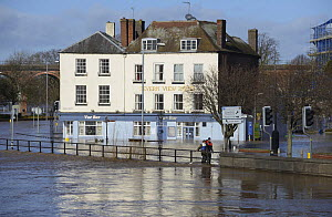 Severn View Hotel during record breaking floods, Worcester, England, UK, 13th February 2014.  -  Will Watson