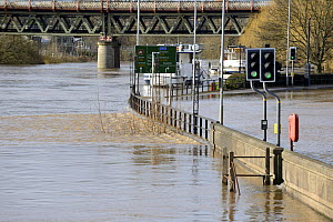 River Severn floodwaters on road, Worcester, England, UK, 13th February 2014. - Will Watson