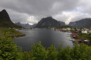 View across the harbour and mountains, Norway Sea, Moskenesoya, Lofoten Islands, Norway, June.  -  Loic  Poidevin