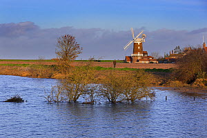 View of flooding after the 6th December east coast tidal surge, with Cley windmill and village in the background, Norfolk, England, UK, December 2013. - Ernie  Janes