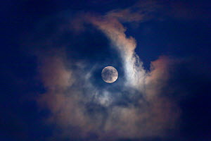 Full moon behind clouds, seen from Norfolk, England, UK, January 2010.  -  Ernie  Janes