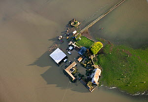 Farm surrounded by extensive January 2014 floods in Somerset Levels, near Langport, England, UK, 9th January 2014.  -  David  Woodfall