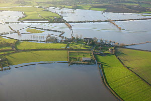 Part of Muchelney village with church and abbey, cut off by January 2014 flooding in Somerset Levels, England, UK, 9th January 2014.  -  David  Woodfall
