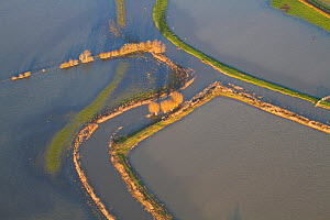 River Parrett with levees and fields during January 2014 flood, Somerset Levels, England, UK, 9th January 2014.  -  David  Woodfall