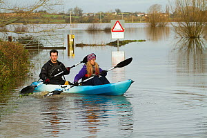Couple in kayak during January 2014 flooding, North Curry, Somerset Levels, England, UK, 10th January 2014.  -  David  Woodfall