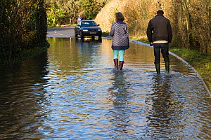 Couple walking in flooded road with stranded car during January 2014 floods, Somerset Levels, England, UK, 11th January 2014. - David  Woodfall