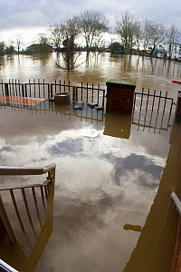 Stairs and garden of club flooded by River Severn (background) following February 2014 floods in Worcester, England, UK, 10th February 2014.  -  David  Woodfall