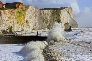 Waves breaking against sea wall and cliffs, Seaford, Sussex, England, UK, 15th February 2014.  -  Mark Taylor