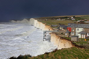 Waves crashing against chalk cliffs, with houses close to edge of cliffs, during a winter storm at Birling Gap, Sussex, England, UK, 15th February 2014.  -  Mark Taylor