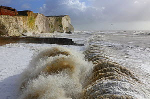 Waves crashing beach with chalk cliffs during a winter storm at Birling Gap, Sussex, England, UK, 15th February 2014.  -  Mark Taylor