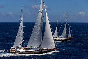 Mega yachts racing in 2013 St. Barths Bucket Regatta, March 2013, Caribbean. All non-editorial uses must be cleared individually.  -  Onne van der Wal
