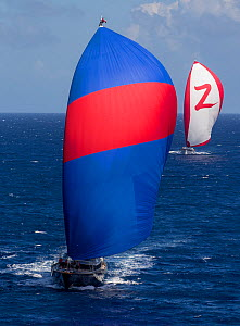 Mega yachts with spinnakers out during the 2013 St. Barths Bucket Regatta, Caribbean, March 2013. All non-editorial uses must be cleared individually.  -  Onne van der Wal