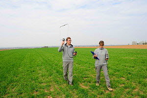 Scientists from the French Wildlife Department (ONCFS) radio tracking the common hamster (Cricetus cricetus) in a wheat field, Alsace, France, April 2013 Model released.  -  Eric Baccega