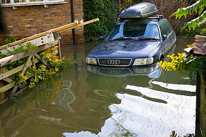 Car stranded in February 2014 floods from the River Thames, Sunbury on Thames, Surrey, England, UK, 15th February 2014.  -  David  Woodfall