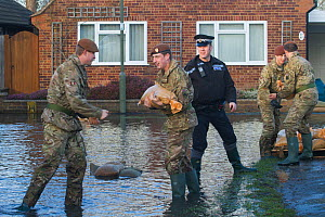 Army and police in flooded street after February 2014 flooding, helping to provide support for the residents and supplying sand bags, Chertsey, Surrey, England, UK, 16th February 2014.  -  David  Woodfall