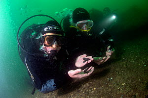 Presenter Mary-Anne Ochota, examining copper keel pins on the wreck of HMS Colossus, Scilly Isles, UK. On location for tv programme  Britain's Secret Treasures. July 2013. - Michael Pitts