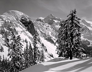 Black and white photograph of Mount Shuksan in the winter as seen from Austin Pass, Heather Meadows Recreation Area, Washington, USA. - Kirkendall-Spring
